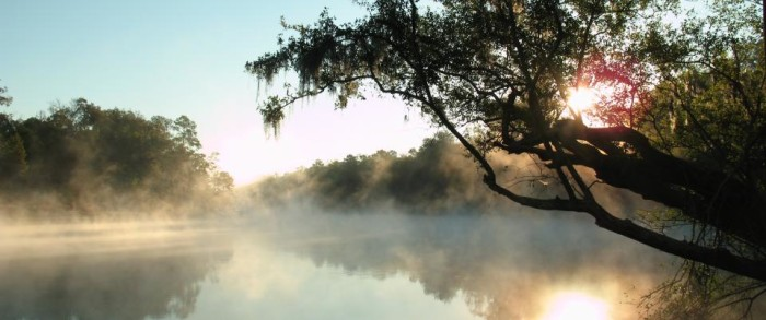 IMG 29 In: Rum Island Spring Ranked # 5! | Our Santa Fe River, Inc. (OSFR) | Protecting the Santa Fe River in North Florida