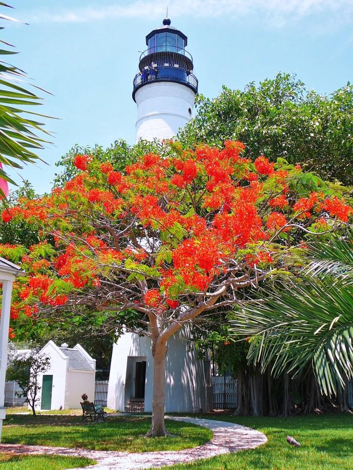 8. Key West Lighthouse