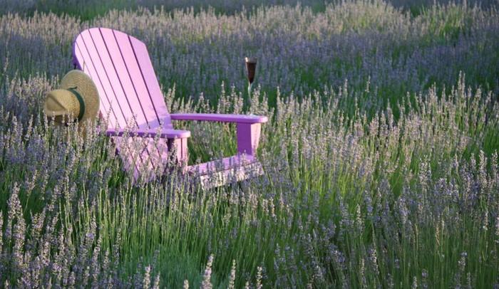 4. La Bastide Des Lavendes, York, SC