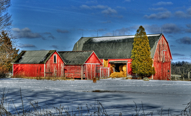 8) Red Barn in Lapeer County