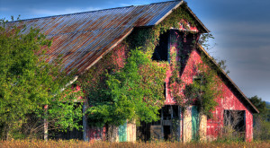 You Will Fall In Love With These 15 Beautiful Old Barns In Tennessee