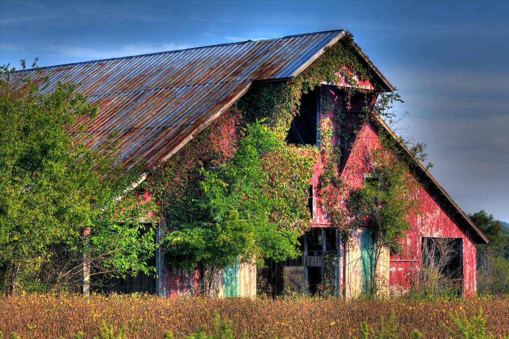 You U0026 39 Ll Fall In Love With These 15 Barns In Tennessee