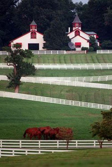 3. Lexington in Red