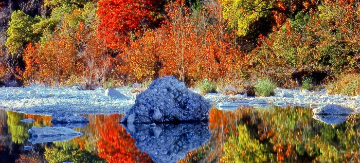 Lost-Maples_959.2_647