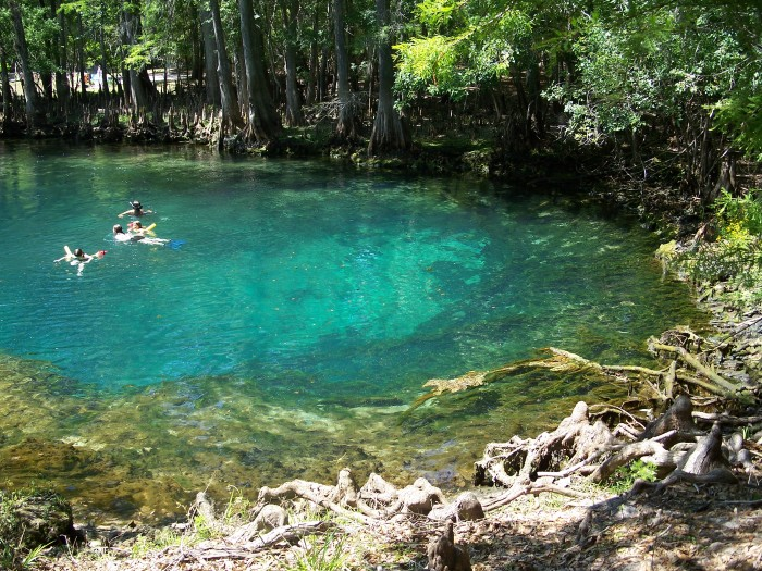 15 Florida Swimming Holes You Have To Visit This Summer
