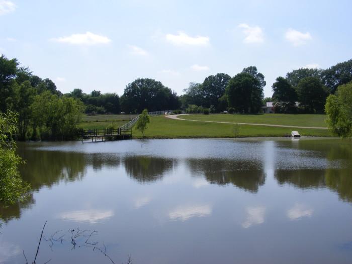 Meadow View Inn 2