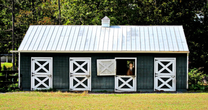 5. A Picturesque Home for Horses in Middletown