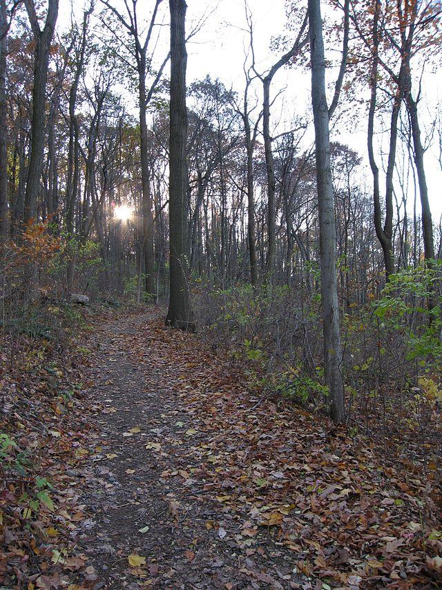 10. Nolde Forest Environmental Education Center, Berks County