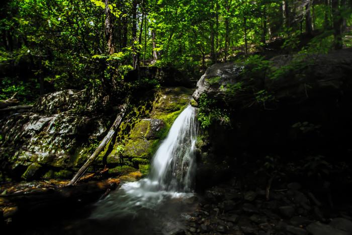 9. Dunnfield Creek