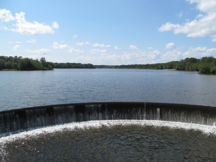 8. Parvin State Park, Pittsgrove