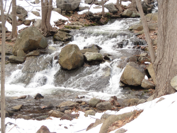 4. Ramapo Falls