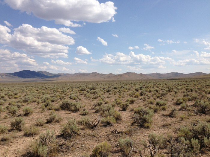 21. The Federal Government owns approximately 87% of Nevada's land.