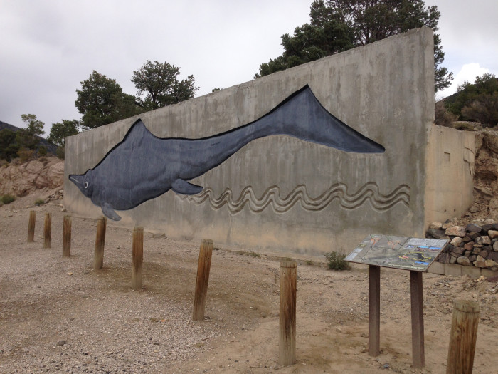 6. Nevada is home to the only intact ichthyosaur skeleton in the United States - Berlin-Ichthyosaur State Park / Austin, NV