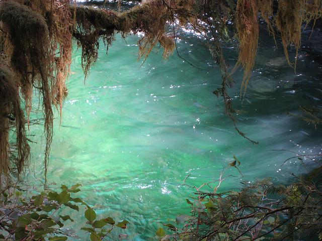 4) Opal Creek Wilderness Area, Lyons
