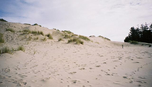 4) Oregon Dunes National Recreation Area