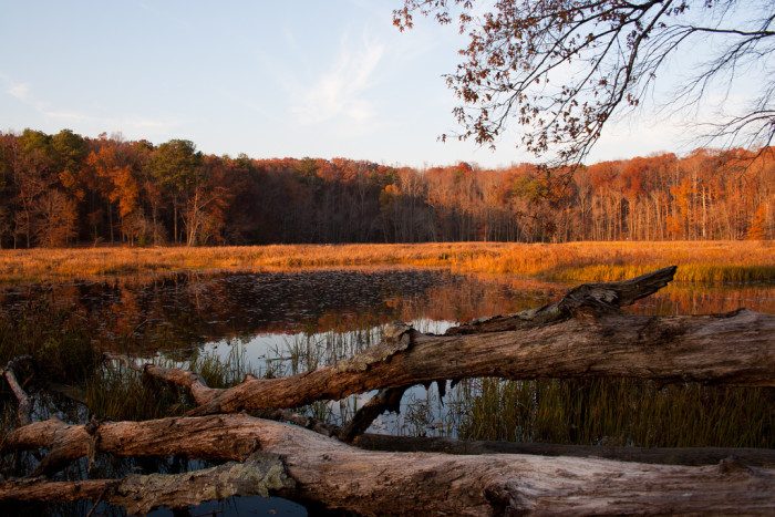 These 17 Virginia State Parks Are Breathtaking
