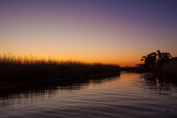 5) Sun hidden below the marsh.