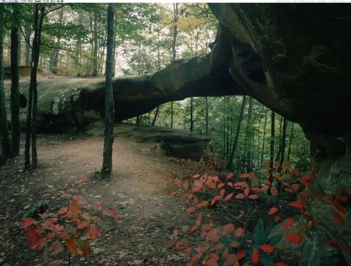 1. Red River Gorge
