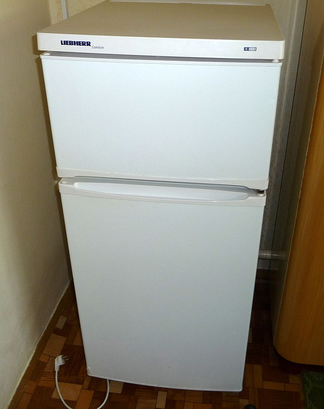 4. You may not sleep on a refrigerator outside.