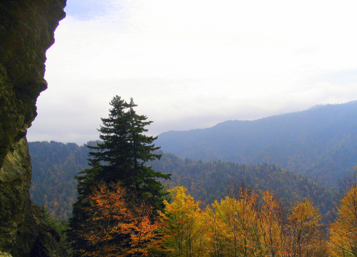 4) Great Smoky Mountains, doin' it again