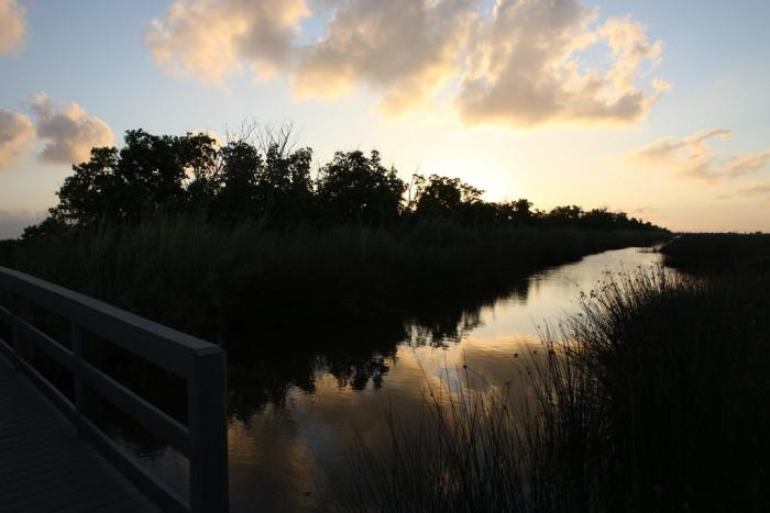 3) Creole Nature Trail, Cameron Parish, LA