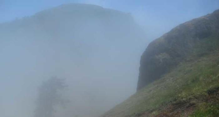6) Saddle Mountain State natural area