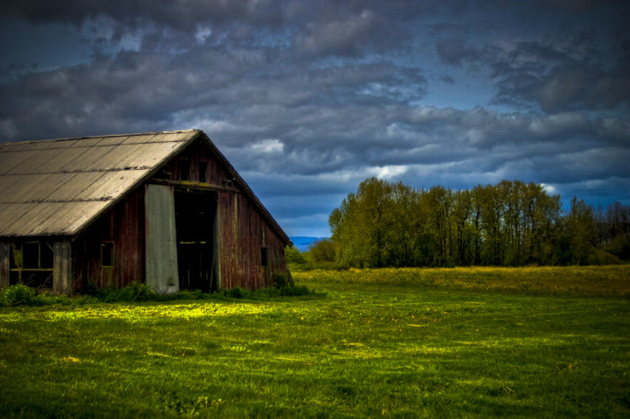 4) Old barn, set against a bright green field and cloudy, blue sky on Sauvie Island