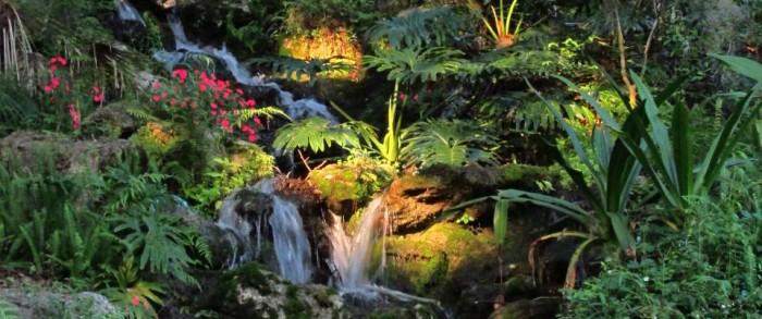 7. Rainbow Springs State Park