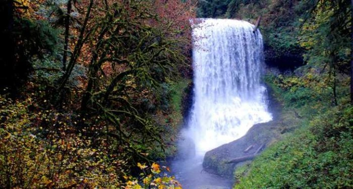 5) Silver Falls State Park