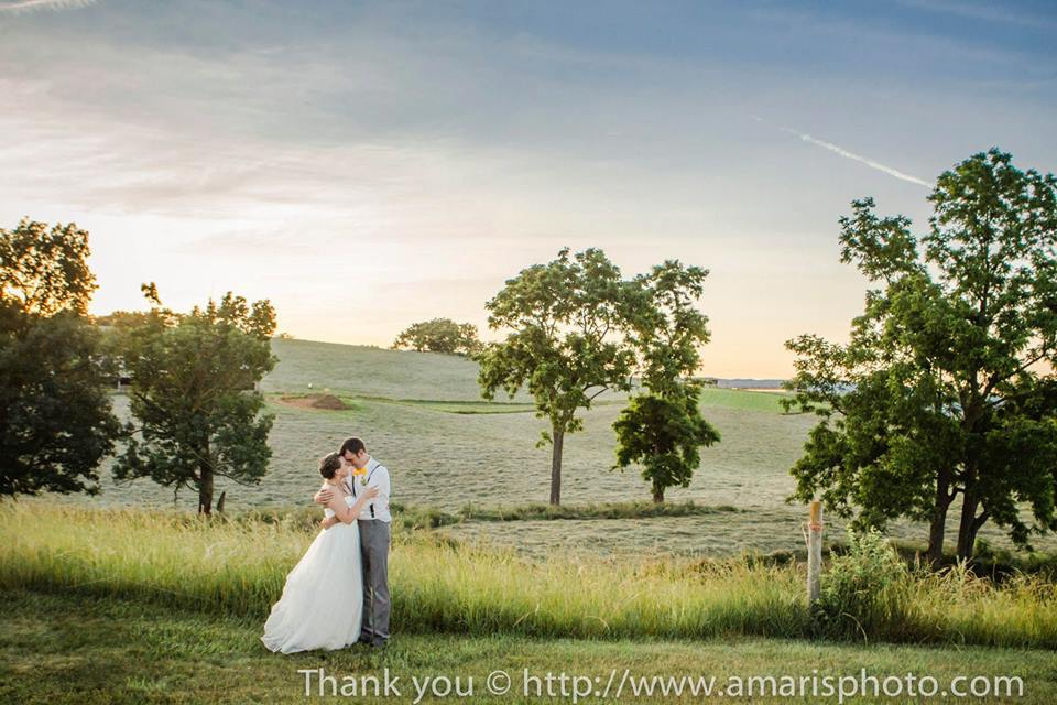 14 epic places to get married in virginia for Best places to get married in austin