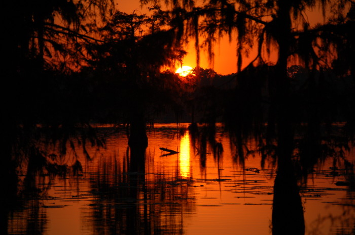 4) Deep orange sun in Cajun country.