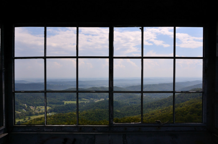 1) We'd look out this window ALL day every day