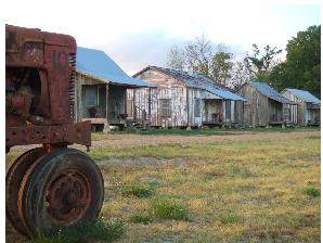Tallahatchie Flats 2