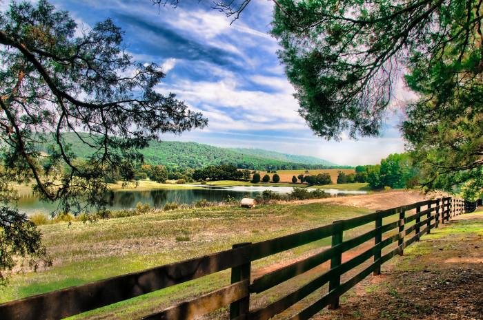 10. The Lake at Trump Winery in Albemarle County