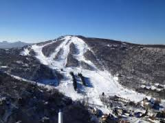 5. Going skiing in the winter