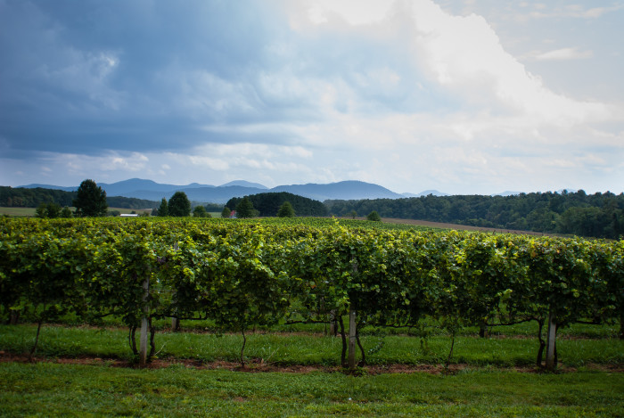 16. Visit a winery -- anywhere in the state