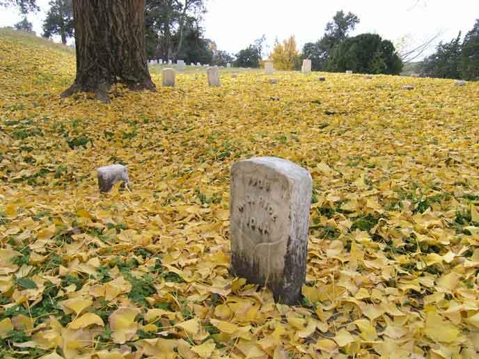 2. Vicksburg National Cemetery