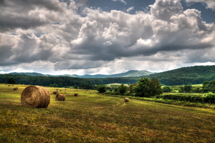 26. Virginia Countryside at its finest just south of Charlottesville
