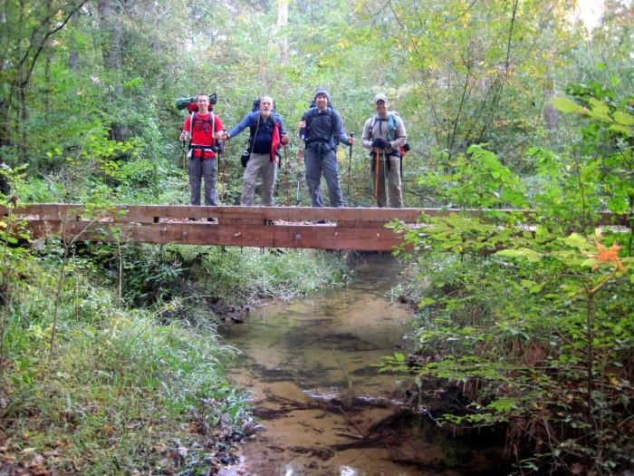 6. Wild Azalea Trail, Kisatchie National Forest