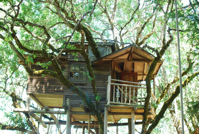 13) Here, the photographer suggests this treehouse is fit for an entire family.