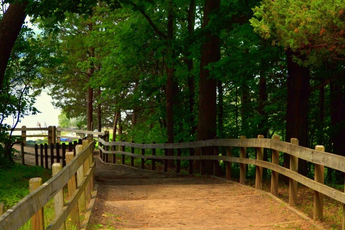 11. If you and your date like to hike and enjoy nature, your best bet is Mississippi Palisades State Park (Savanna).