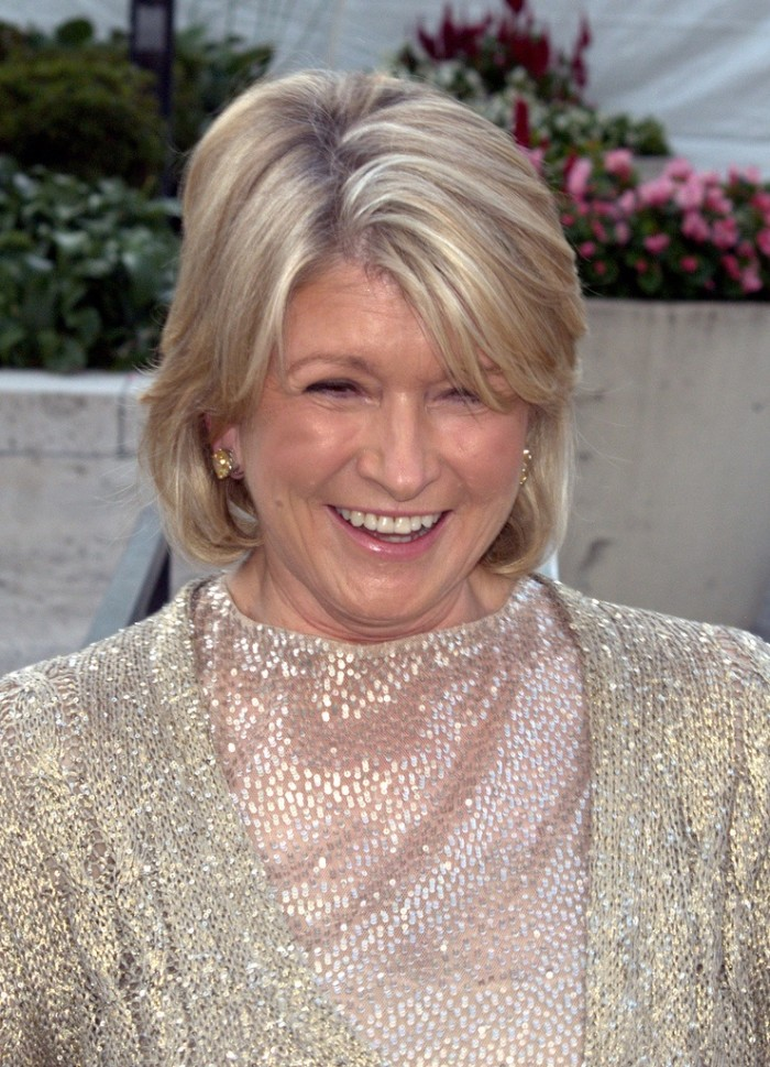 12. Martha Stewart. This woman bakes beautiful, individual desserts...for every dinner. Her child has the best handmade Halloween costume and you're pretty sure there's some sort of shield over the house preventing any dust from ever falling.