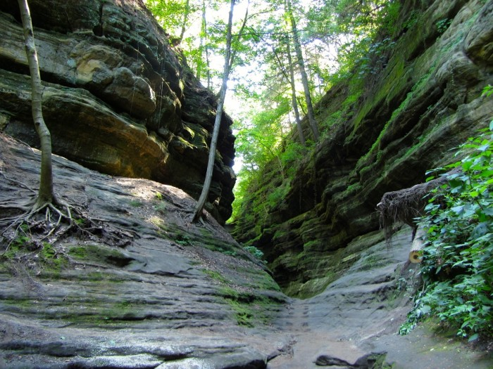 7. One of the most scenic state parks is Starved Rock (Utica).