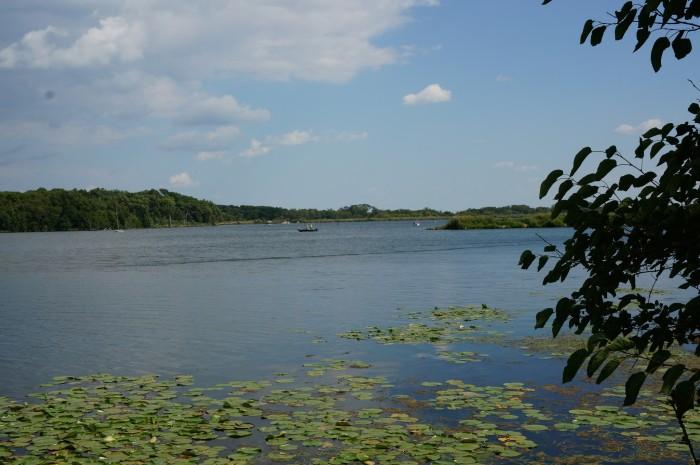 7. Lake Shabbona State Park (DeKalb Co.)
