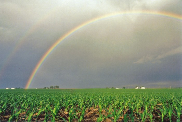 3. Awesome shot of a rainbow over a farm in McLean County.
