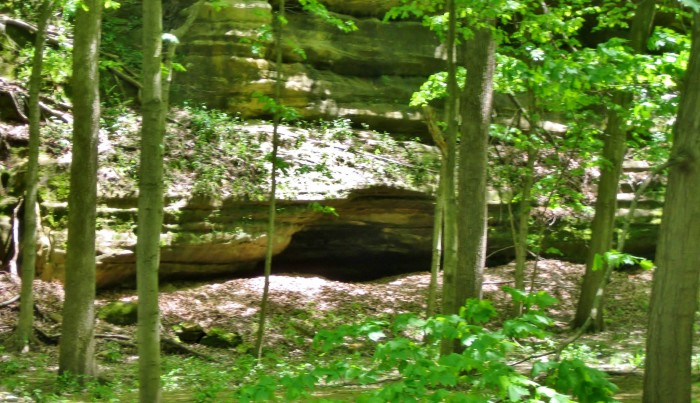6. Shaky Shelter Site (Deer Park Township)