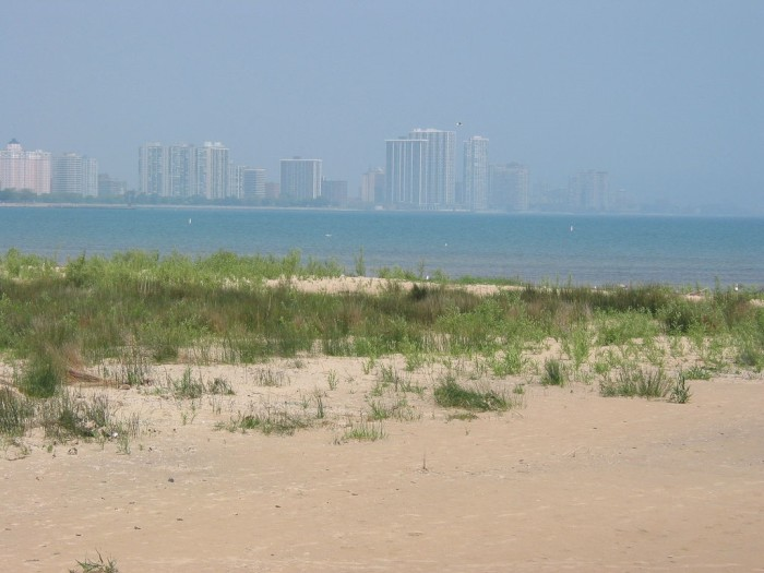 9. Montrose Beach (Chicago)