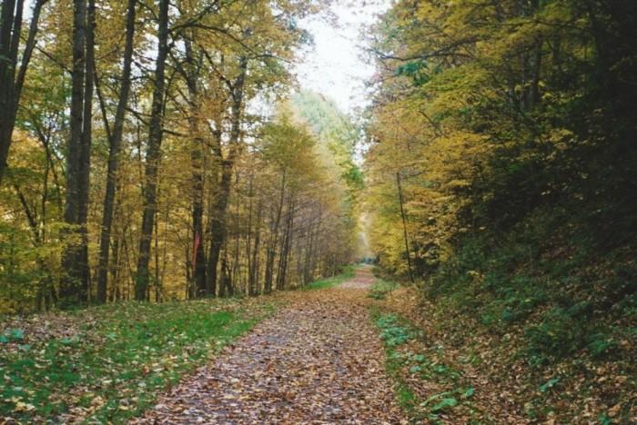 1. Allegheny Highlands Trail