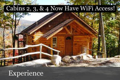 5. Treehouse Cabin Rentals, Hot Springs