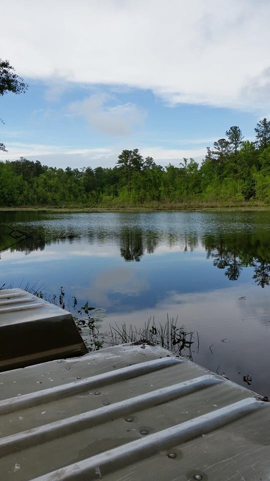 4. Barnwell State Park, 223 State Park RD Blackville, SC 29817 Phone: (803) 284-2212
